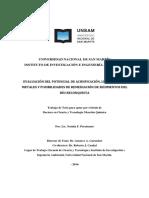 Evaluación del Potencial de Acidificación, Liberación de Metales y Posibilidades de Remediación de sedimentos del Río Reconquista