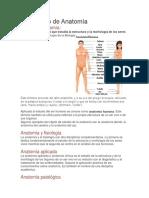 Significado de Anatomía