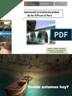 61754670-Fortalecimiento-Institucional-de-IVPs.pdf
