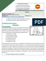 Extraccion y Caracterizacion de Alcaloides en Una Droga Vegetal.