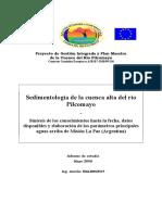 Informe Sedimento Cuenca Alta Pilcomayo