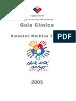 Guía AUGE 2005.pdf
