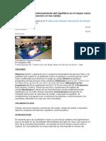 Ejercicio Físico y Entrenamiento Del Equilibrio en El Mayor Como Estrategia de Prevención en Las Caídas