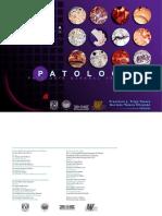 trigopatologiageneral-111006191218-phpapp01.pdf