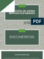 patologias del sistema reproductor femenino pdf