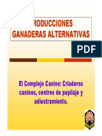 19_17_56_9-PGA-Cria-Canina.pdf