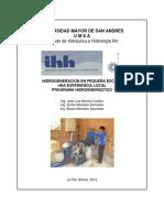 Hidrogeneración en pequeña escala_resumen.pdf