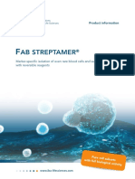 FabStreptamer Flyer