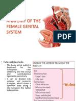 Anatomy Ppt