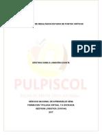 Puntos Criticos.doc