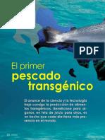 El Primer Pescado Transgénico