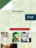 Percepcion Sternberg 31