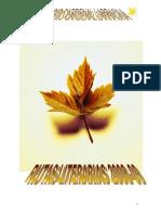 proyecto-rutas-literarias-2008-09.doc
