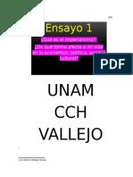 Ensayo 1