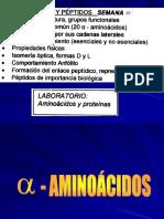 Aminoc Cidos y Protec Nas