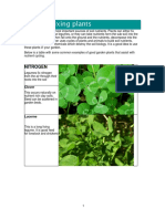 nutrition_fixing_plants_cmp.pdf