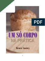 um-so-corpo-na-pratica-bruce-anstey.pdf