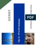 12-PV & QV Analyses