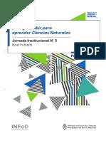 Primaria - Jornada Institucional N° 3 - Carpeta Participante