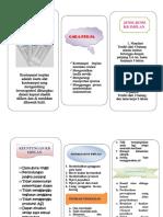 Kb Implan Leaflet