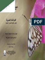 Butterflies of Egypt Atlas