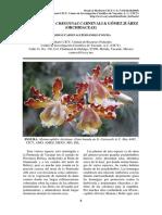 2009-04-02-Myrmecophila-christinae-Carnevali.pdf