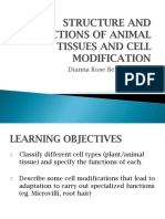 Structure and Functions of Animal Tissues and Cell