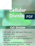 Cell Cycle and Cell Dicision