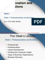 MN501 Lecture 1 - Professionalism and Organisations v2017.3