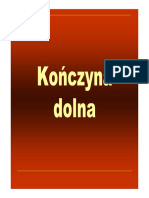 KD - Fizjoterapia