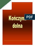 KD - Fizjoterapia.pdf