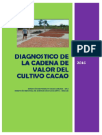 DIAGNOSTICO CACAO.pdf