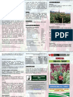 kiwicha.pdf