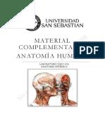 Material Complementario Anatomia Humana DBIO1052