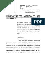 Solicita Nueva Notificaicón Lourdes