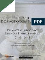 obrasildosagrocombustiveisv2-090528151342-phpapp01.pdf