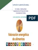 17_17_30_Valoracion_de_Alimentos.pdf