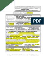 85060514 Modelo Del 1er Informe Etapa Productiva