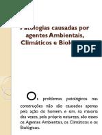 patologiascausadasporagentesambientaisclimticosebiolgicos-130225104244-phpapp01