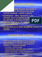 8.Cancerul Gastric