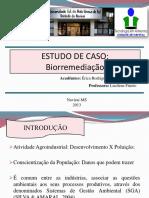 Biotec Bireemediação Slides