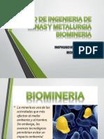 Biomineria-fimm 2 Hugo