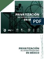 privatizacion-del-sistema-penitenciario-en-mexico.pdf