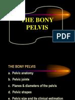 1 Bony Pelvis