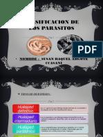CLASIFICACION DE LOS PARASITOS (Dc ARIEL).pptx