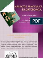 Lili Rivera Méndez_aparatos Removibles en Ortodoncia