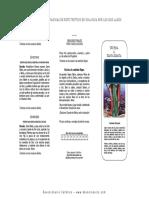Santa Martha.pdf