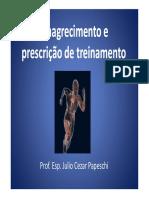 emagrecimento-e-treinamento-julio-cesar-papeschi.pdf