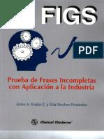 Manual FIGS.pdf