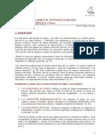 SENTIMIENTOS+SEG$C3$9AN++DAMASIO.pdf